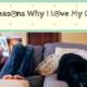 Reasons Why I Love My Dog