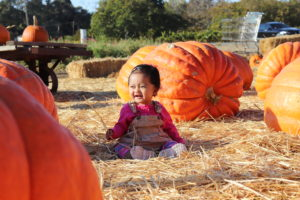Fall 2018: Pumpkin Patch Time!